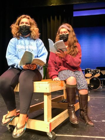 Live theatre is back with Sense and Sensibility